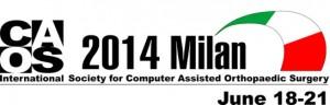 CAOS 2014 Milan Italy
